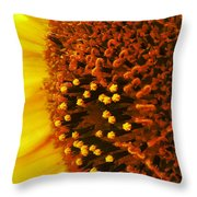 Photon Torpedoes Primed Throw Pillow