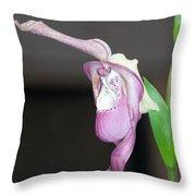 Phragmipedium - Phrag Frank Smith Orchid Throw Pillow