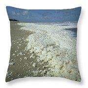 Phytoplankton Bloom On Beach Throw Pillow