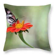 Piano Wings Butterfly Throw Pillow