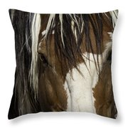 Picasso's Eyes Throw Pillow by Carol Walker
