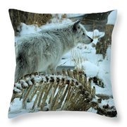 Picked Clean Throw Pillow