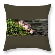 Pickerel Frog Throw Pillow
