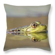 Pickerel Frog Nova Scotia Canada Throw Pillow