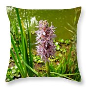Pickerel Weed Plant Throw Pillow