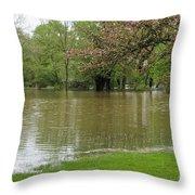 Picnic Area Throw Pillow