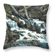 Picnic At The Falls Throw Pillow