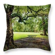 Picnic At The Park Throw Pillow