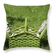 Picnic Basket Throw Pillow