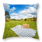 Picnic Blanket And Basket In Sunny Field Throw Pillow