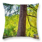 Picnic By The Cypress Throw Pillow
