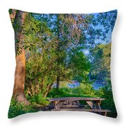 Picnic By The Methow River Throw Pillow