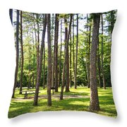 Picnic In The Pines Throw Pillow