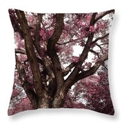 Picnic Rose  Throw Pillow