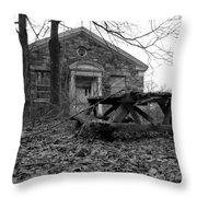 Picnicing Throw Pillow