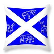 Pictish Scotland Flag 2 Throw Pillow