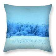 Picture Perfect Landing Throw Pillow