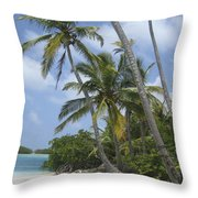 Picture Perfect Paradise Throw Pillow