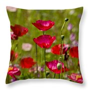 Picture Perfect Poppies Throw Pillow