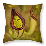Picture Plant Throw Pillow