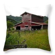 Piece Of The Past Throw Pillow