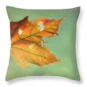 Pieces Of Me Throw Pillow
