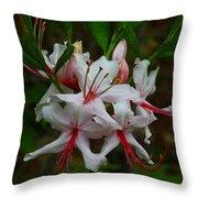 Piedmont Azalea Throw Pillow