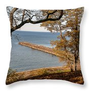 Pier In The Fall Throw Pillow