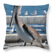 Pier Brown Pelican Throw Pillow