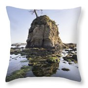 Pig And Sows Rock In Garibaldi Oregon At Low Tide Throw Pillow
