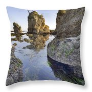 Pig And Sows Rock In Garibaldi Oregon At Low Tide Vertical Throw Pillow