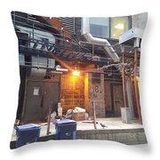 Pigeon Dock Throw Pillow