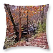 Pigeon Forge River Throw Pillow