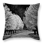 Pigeon Mountain Dogwoods In Black And White Throw Pillow