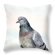 Pigeon Portrait Throw Pillow