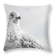 Pigeon Pride II Throw Pillow