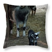 Pigmy Goats Throw Pillow