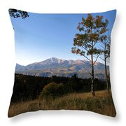 Pikes Peak Landscape Throw Pillow