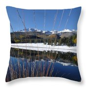 Pikes Peak Through The Grass Throw Pillow