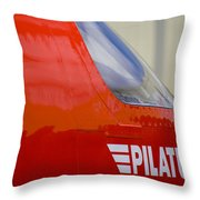 Pilatus Throw Pillow
