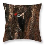 Pileated In Winter Throw Pillow