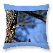 Pileated Series #3 Throw Pillow