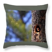 Pileated Series #6 Throw Pillow