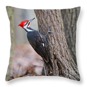 Pileated Woodpecker On Tree Throw Pillow