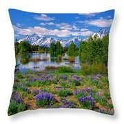 Pilgrim Creek Wildflowers Throw Pillow