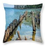 Pilings On Lake Michigan Throw Pillow