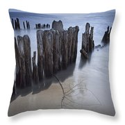 Pilings On The Beach Along A Lake Michigan Shore Throw Pillow