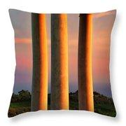 Pillars Of Life Throw Pillow