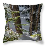 Pillows On Evergreen Throw Pillow