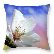 Pin Cherry Swirl Throw Pillow